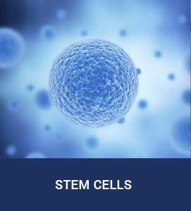 Stem Cell Institute of Texas